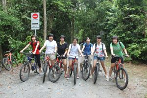 "Cycling Tours - ""Nature Sightseeing"""