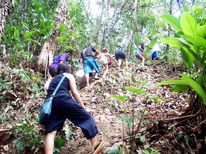 Trail hiking in Singapore